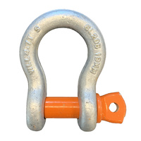 Grade S Alloy Steel Screw Pin Bow Shackles - Component Size - 19mm